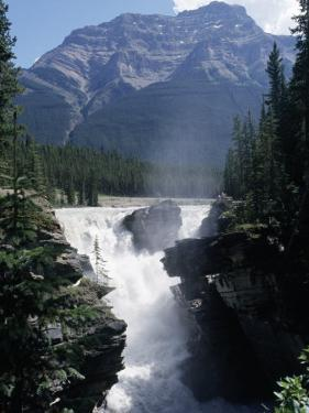 Athabasca Waterfall in Jasper National Park, Alberta, Canada by Claire Rydell