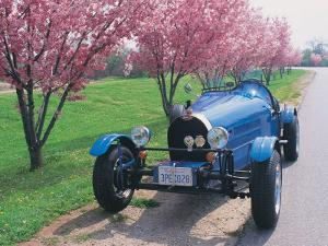 Bugatti Racecar and Cherry Blossoms by Claire Rydell