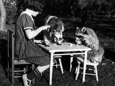 Claire Shorrock Giving Ice Cream Party with Pet Dog and Raccoon