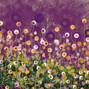 Purple and Gold field by Claire Westwood