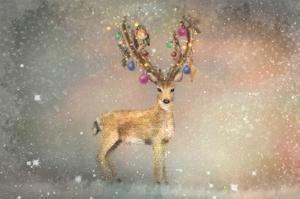 Stag of Winter by Claire Westwood