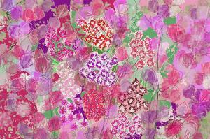 Sweetness all over by Claire Westwood