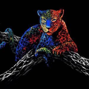 The Cheetah by Clara Summer