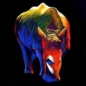 The Rhino by Clara Summer