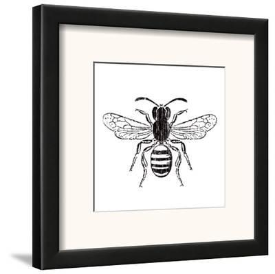 Bee by Clara Wells
