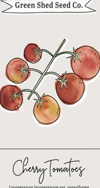 Green Shed Seeds - Tomatoes by Clara Wells