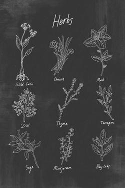 Herbs by Clara Wells