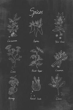 Spices by Clara Wells