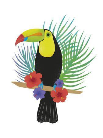 Toucan Tropics - Free