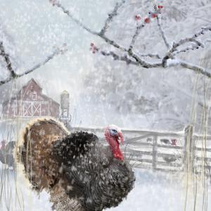 Christmas turkey by Clare Davis London