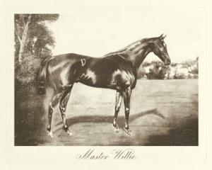 Master Willie by Clarence Hailey