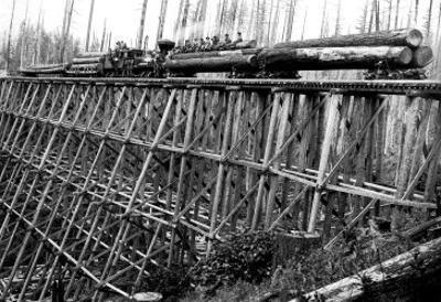 Bridge of Trees