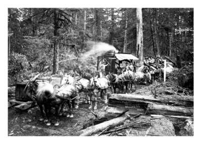 Loggers and Their Logs