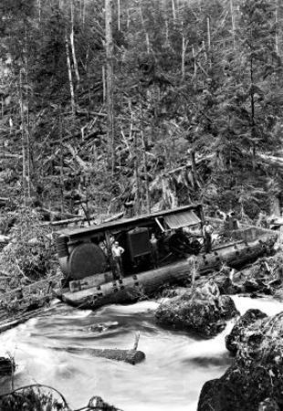 Logging Boat in a Tangle