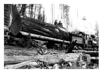 Transporting Fallen Old Growth