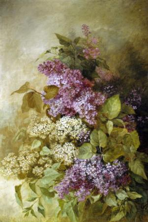 Study of Lilac by Claude Massman