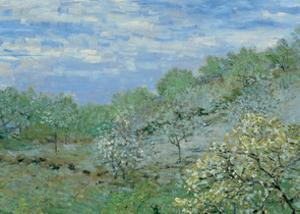 Baume in Blute by Claude Monet