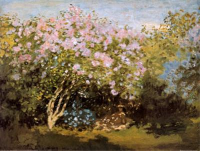 Blossoming Lilac in the Sun, c.1873 by Claude Monet