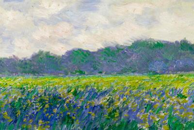 Claude Monet Field of Yellow Irises Plastic Sign by Claude Monet