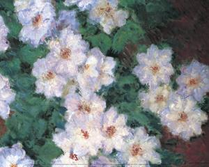 Clematis by Claude Monet