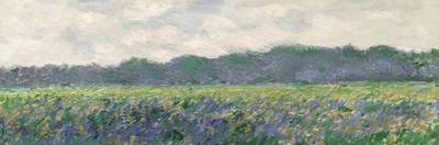 Field of Yellow Irises at Giverny, 1887 by Claude Monet