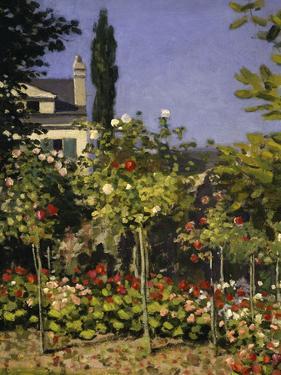 Garden in Bloom, c.1866 by Claude Monet