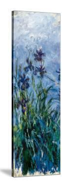 Iris Mauve (detail) by Claude Monet