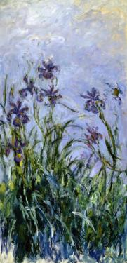 Iris Mauves, 1914-1917 by Claude Monet