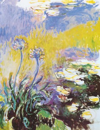 Les Agapanthes by Claude Monet