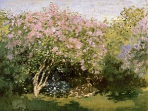 Lilac in the Sun, 1872-1873 by Claude Monet