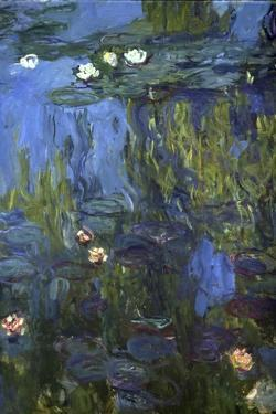 Nympheas, 1914-17 by Claude Monet