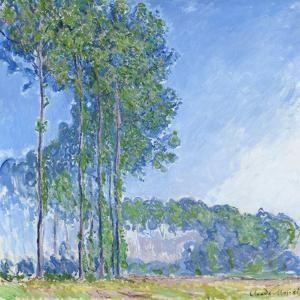 Poplars, 1891 by Claude Monet