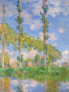 Poplars in the Sun, 1891 by Claude Monet
