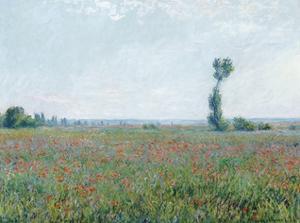 Poppy Field, 1881 by Claude Monet