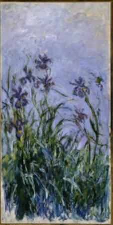 Purple Irises, 1914-17 by Claude Monet