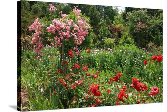Claude Monet's Garden in Giverny, Department of Eure, Upper Normandy, France--Stretched Canvas Print