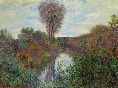 Small Branch of the Seine, 1878 by Claude Monet