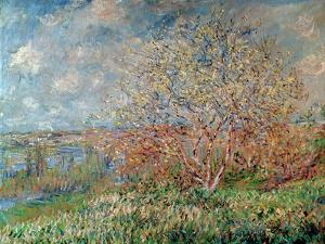 Spring, 1880-82 by Claude Monet