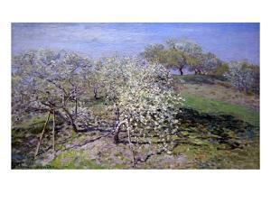 Spring Fruit Tees in Bloom by Claude Monet
