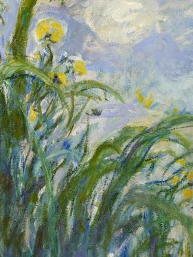 The Yellow Iris (Detail) by Claude Monet