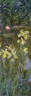 The Yellow Irises, 1914-17 by Claude Monet
