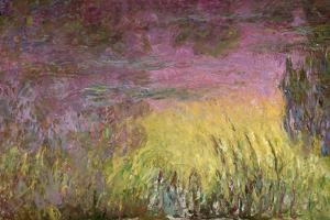 Waterlilies at Sunset, 1915-26 by Claude Monet