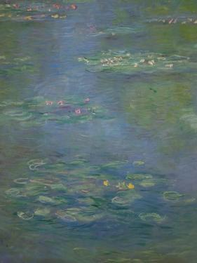 Waterlilies, Detail, 1903 by Claude Monet