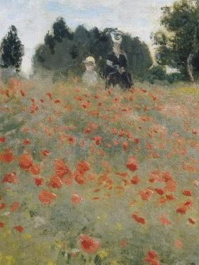 Wild Poppies by Claude Monet