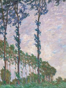 Wind Effect, Series of Poplars by Claude Monet
