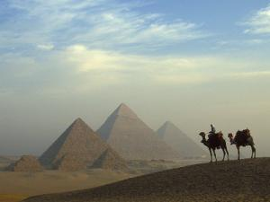 Camels and Driver at the Pyramids Complex, Egypt by Claudia Adams