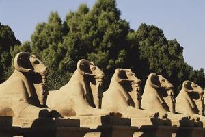 Egypt, Luxor, Ram Headed Sphinx at Karnak Temple by Claudia Adams