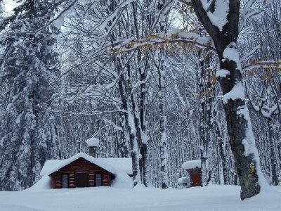 Log Cabin in Snowy Woods, Chippewa County, Michigan, USA