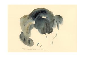Cat, 1985 by Claudia Hutchins-Puechavy