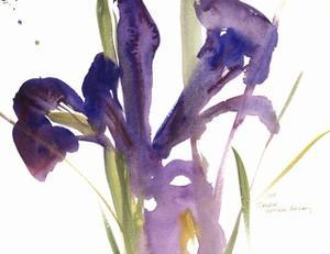 Iris, 1987 by Claudia Hutchins-Puechavy